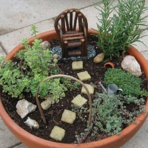 Mini Herb Fairy Gardens